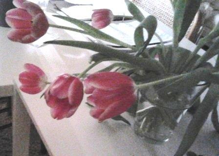 Bos bloemen na het water vitaliseren.jpg